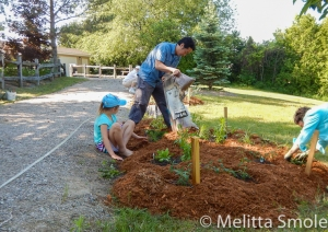 bgoss-planting-day-perkins-park-june-18-2016-image-by-kerry-jarvis-13