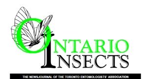 Logo for Ontario Insects
